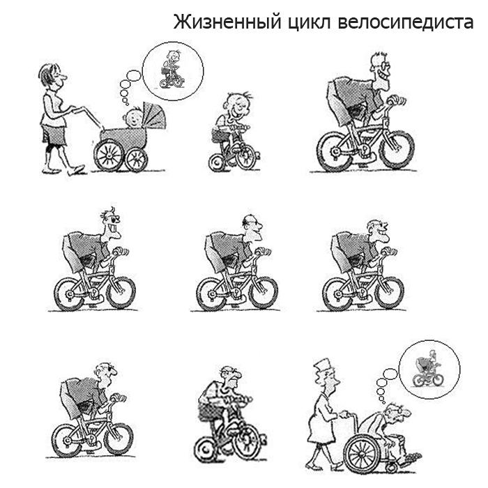 Жизненный цикл велосипедиста
