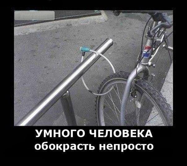 velo-humor (1)