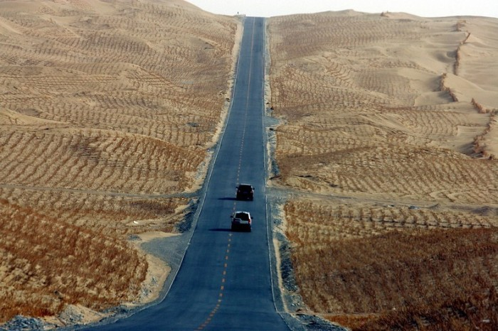Tarim Desert Highway (4)