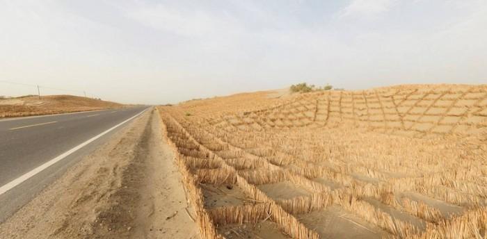Tarim Desert Highway (7)
