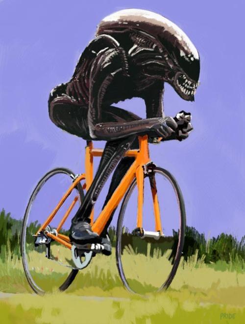 правильный велосипедист