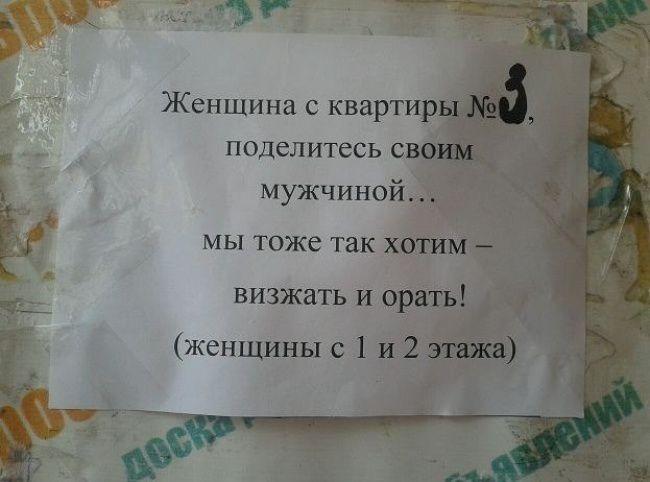 humor (12)