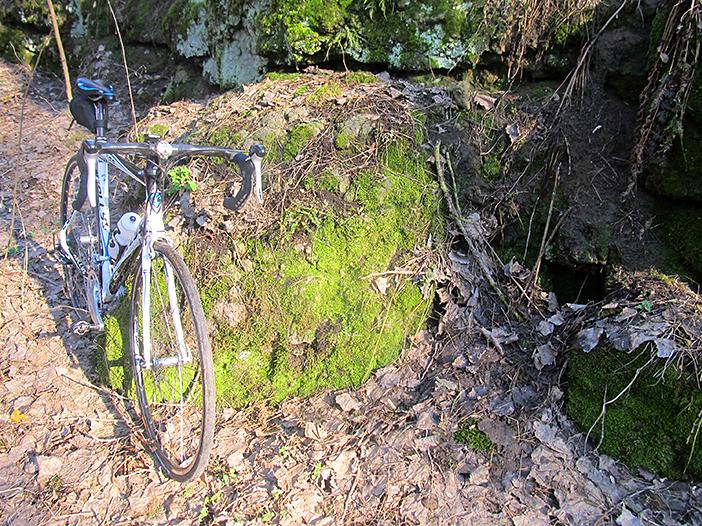 Винница, лес, велосипед