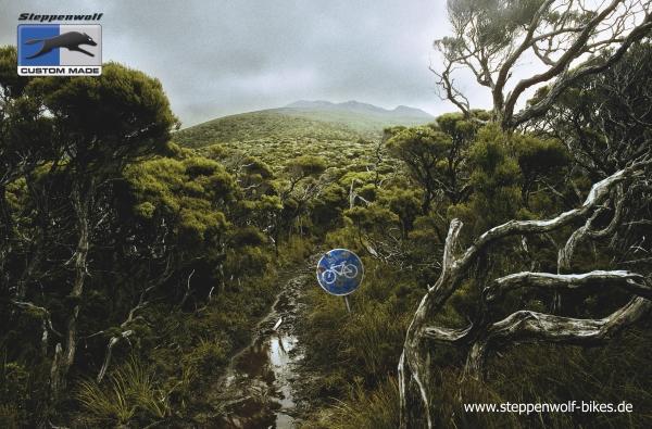 Реклама велосипедов Steppenwolf