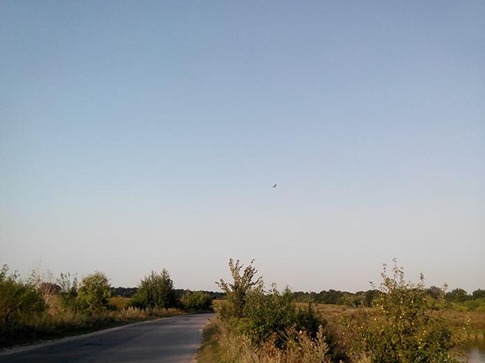 Фото озерного-птичьего края