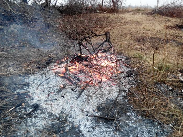 Огонь Fire