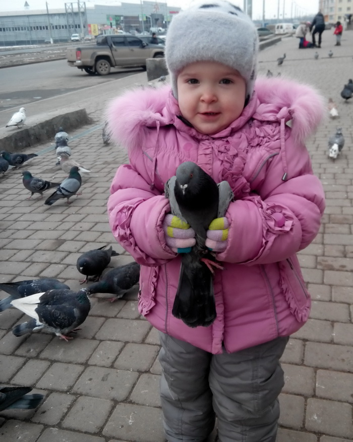 Веда поймала голубя