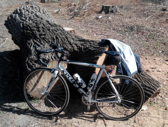 Road bike Kellys and Wood