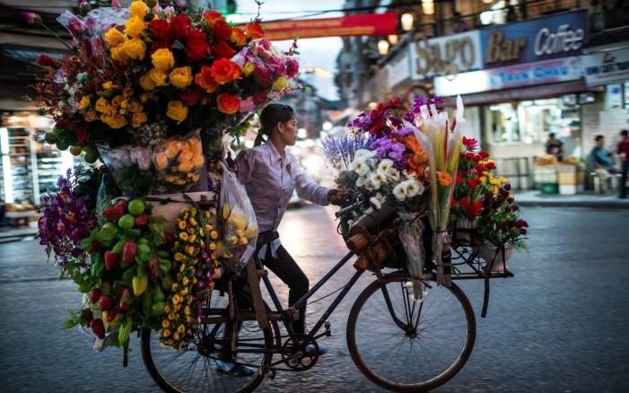 Обои для рабочего стола: девушка и велосипед много цветов