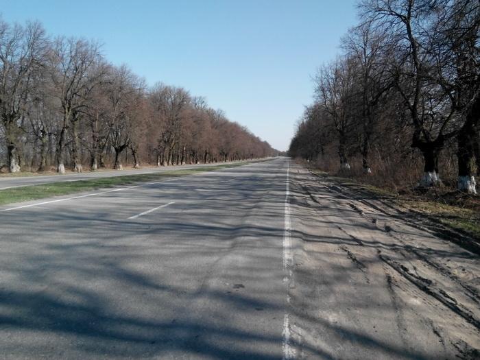 дорога road