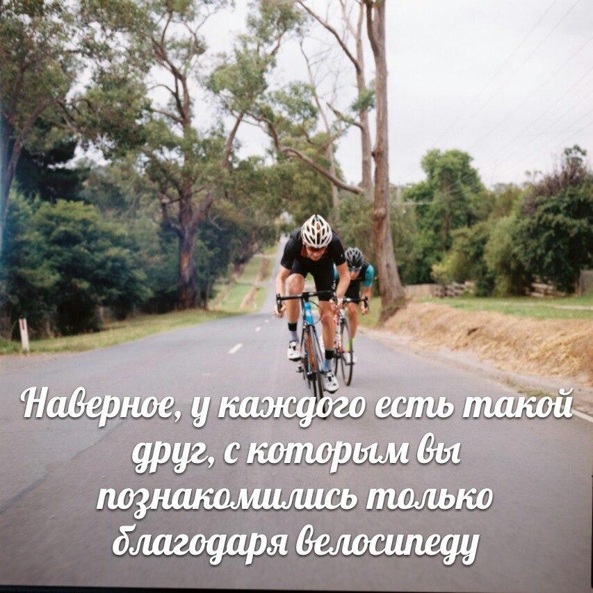У каждого есть друг велосипед