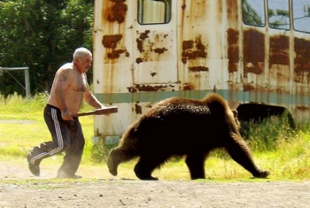 медведь убегает