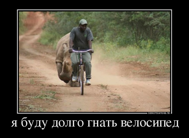 демотиватор велосипедист бежит от носорога