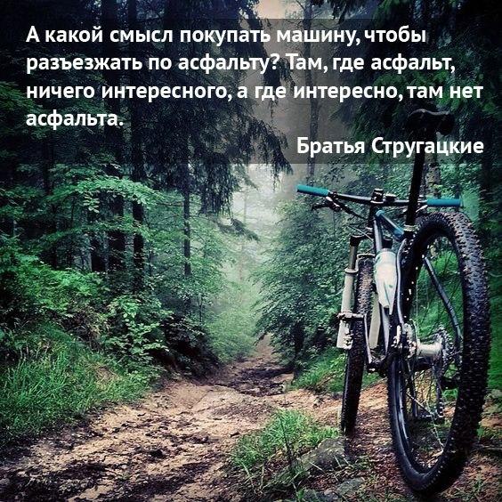 асфаль велосипед