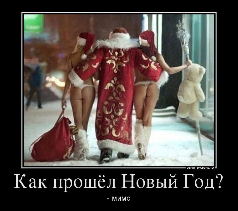 67345060_kak-proshyol-novyij-god