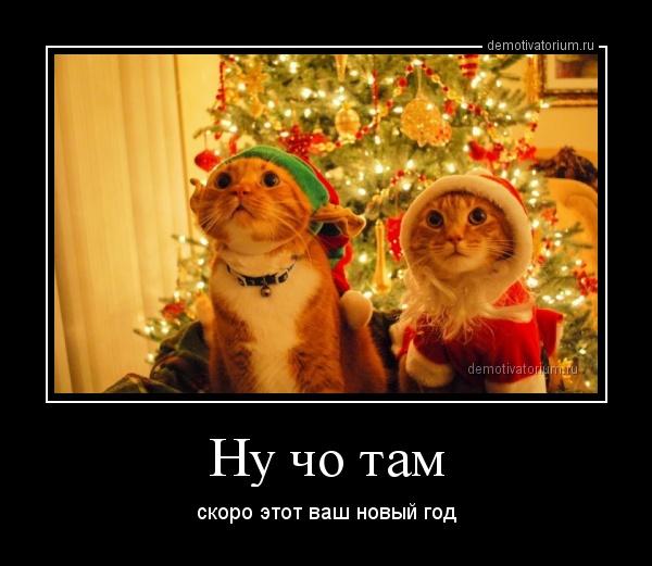 demotivatorium_ru_nu_cho_tam_36575