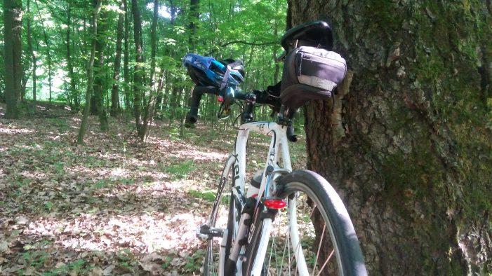 Велосипед, вид сзади